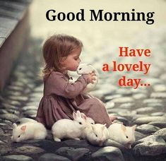 Good morning! Have a lovely day!