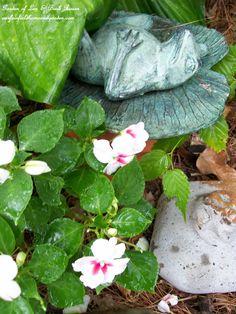 Frog in the flowerbed (Garden of Len & Barb Rosen)  ourfairfieldhomeandgarden.com