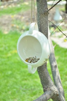 Hang a sugar bowl on a tree for a small sweet birdfeeder