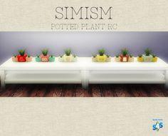 鉢植えリカラー(Potted plant) http://simism.xxribon.chu.jp/?eid=37