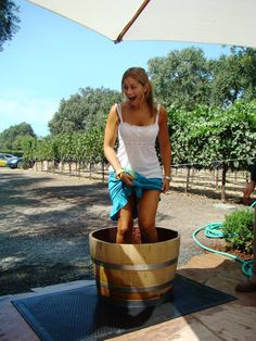 Grape stomping at Grgich Hills Estate.