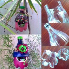 Turn a 2 L bottle into a birdhouse