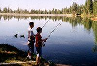Angels Camp Rv Resort Angels Camp Ca Cool But No Lake