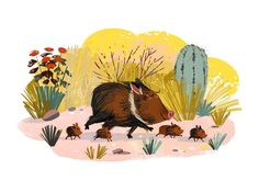 KIM DRAWS! — Wild hogs!