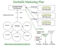 Marketing Plan  Herbalife Marketing Plan