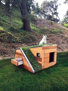 Cool DIY Dog House Plans Anyone Can Build DIY Projects There are many options available for you when looking for cool dog houses for your dog. There are many types of dog houses available, and some types a. Fancy Dog Houses, Dog House Plans, House Dog, Luxury Dog House, Small Dog House, Pallet Dog House, Wooden Dog House, Build A Dog House, Dog Furniture