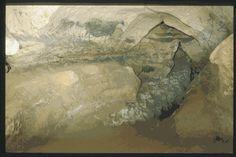 MONTIGNAC (Dordogne, 24). Grotte de Lascaux. Bilan des études. Récapitulation. Légende : Diverticule droit : la nef, paroi est. Panneau de la vache noire.