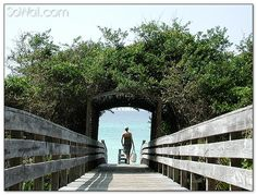 Seagrove beach boardwalk #southwalton