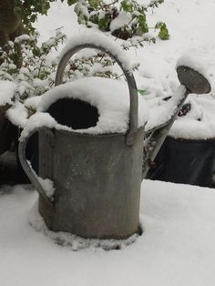 """Watering can in the snow"" by Frances Knight"