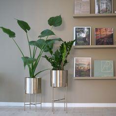 Planter Pots, Brass, Tripod, Metal, Rome, Copper, Rice
