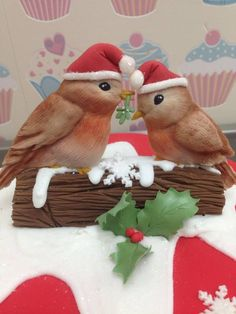 A quick and easy Christmas cake using my Love Bird Mould decorated as Robins. I have added the Christmas hats myself. #christmas #robins #cake #cakedecorating #cutecakes #festive #love #kisses #mistletoe  http://www.karendaviescakes.co.uk/Moulds/?p=211&Love%5FBirds%5FMould