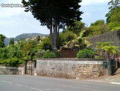 Quintas e Herdades com 9800m² - à venda - Prédios, Terrenos & Quintas, Madeira - CustoJusto.pt