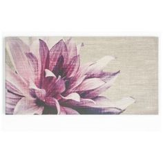 Buy Graham and Brown Pink Petals Canvas at Argos.co.uk, visit Argos.co.uk to…