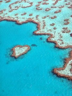 Great Barrier Reef, Australia  This is where I'm taking my husband and kids when I reach my GOAL!