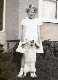 H743 Vintage 1920's Photograph Little Blonde Girl with Pomeranian Dog   eBay