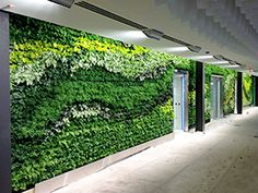 GSky Plant Systems designs green walls for retail, commercial & public spaces ~