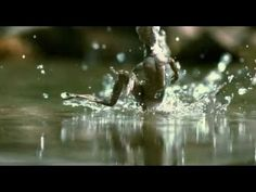 One Life - Trailer.   A MUST not miss movie. The photograhpy will blow your mind.