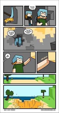 When I play Minecraft...