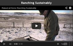 John and Tracy Buckley care about their cattle and the rolling pastures they are raised on near Cochrane, Alta. They value sustainability by actively managin. Western Canada, Family Values, Chapter 3, Wild West, Cattle, Raising, Sustainability, Ranch, Base
