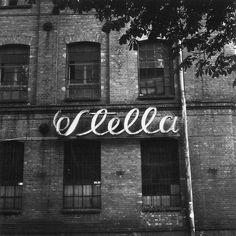 Stella // photo by Monika Z.