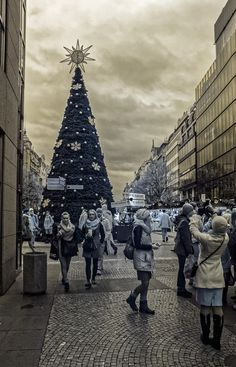 Předvečer vánoc na Václaváku.
