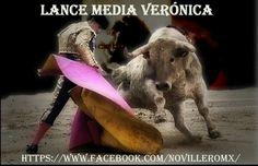 Media Verónica