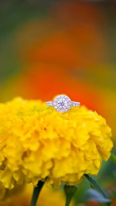 My engagement ring <3