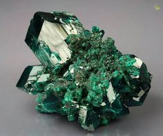 DIOPTASE Mindouli, Mindouli District, Pool Department, Republic of CONGO (Brazzaville)
