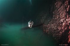 Cenote Angelita: An Underwater River Photographed by Anatoly Beloshchin underwater rivers Mexico landscapes