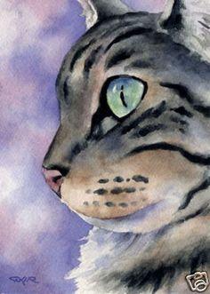 CAT TABBY Watercolor Cat Art ACEO Print Signed DJR  http://www.ebay.com/itm/CAT-TABBY-Watercolor-Cat-Art-ACEO-Print-Signed-DJR-/270643862907?pt=Art_Prints=item3f03a19d7b