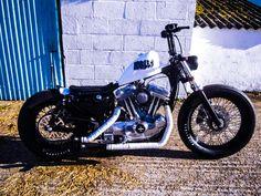 Brat Style Harley-Davidson 'The Bratster' Sportster Bobber.