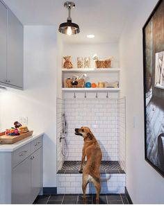 Grey cabinets in a white mudroom with dog shower tiled with subway tiles. 23 Tranquil Interiors with Light Grey and White and be inspired!