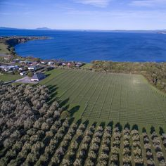 Aerial Jew of Taupo wedding venue, Streamblock photo by @streamblock •