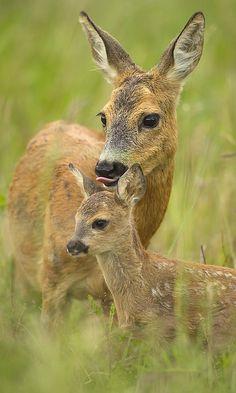 """""""...Mutter mit Kind..."""""""