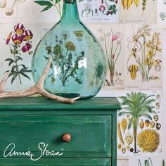 Love my Amsterdam Green waxed distressed a little. #botanicals #anniesloan #chalkpaint #colouriseverything