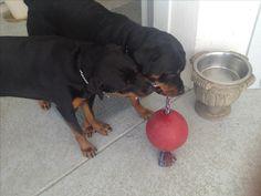 Cesar and Nya Girl