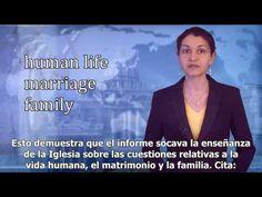 Noticias Católicas Gloria.TV : 14 de marzo 2016. / Español.