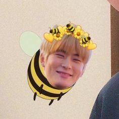 Jaehyun Nct, Kyungsoo, Exo Chanyeol, Kpop, Jung Jaehyun, Thug Life, Meme Faces, Winwin, Wattpad