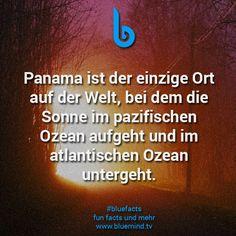 fakten-ueber-das-meer-3