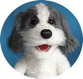 Bobby the Dog. (for sale) Puppets For Sale, Professional Puppets, Types Of Puppets, Puppet Making, Maltese Dogs, Hound Dog, Squirrel, Bobby, Masks