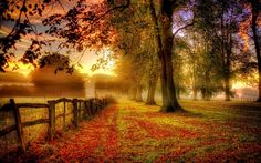 Image result for autumnal equinox 2017