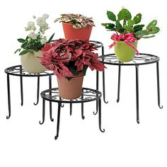 Dazone Metal 4 in 1 Potted Plant Stand Floor Flower Pot Rack - Black- >> See this awesome image : Gardening DIY Indoor Floor Plants, Indoor Garden, Balcony Gardening, Iron Plant, Garden Decor Items, Scroll Pattern, Pot Rack, Flower Stands, Flower Frame