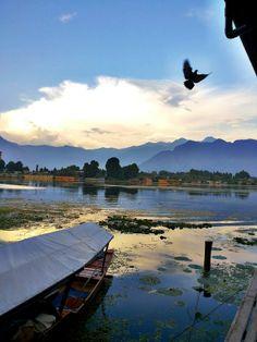 Srinagar, India by vibhav.bisht. #TPbest