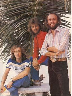 The Bee Gees in the 70s- these guys were awesome!