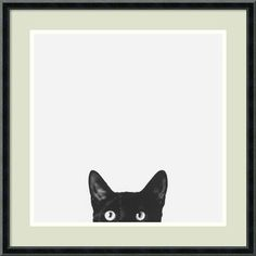 'Curiosity' Framed Print by Jon Bertelli - traditional - prints and posters - by Amanti Art