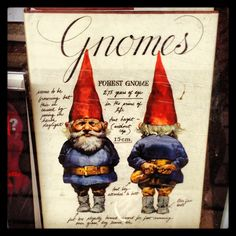 Because gnomes are pretty cool. Especially David the Gnome. Memories!