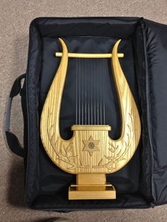 Ten string Davidic Harp patterned off historical Biblical instrument. I have one of these and I treasure it. The sound is beautiful!