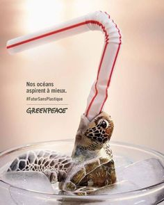 kampagne umwelt I would always say to the GF who loves all animals your killing a baby turtle every time you use a plastic straw! Think of the turtles. Thank you Greenpeace. Layout Design, Graphisches Design, Design Model, Ocean Pollution, Plastic Pollution, Save Our Earth, Save The Planet, Creative Advertising, Advertising Design