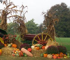 creative outdoor decorating for the fall and autumn, fall gardens, fall decorating Harvest Party, Fall Harvest, Autumn Display, Fall Displays, Autumn Trees, Autumn Fall, Fall Diy, Primitive Fall, Primitive Crafts