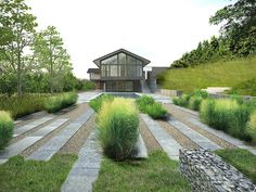 Short hedges made of grasses, and linear pavers for entry walk